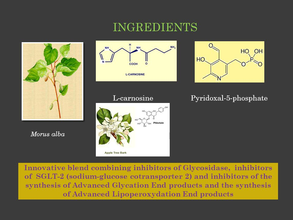 Innovative blend combining inhibitors of Glycosidase, inhibitors of SGLT-2 (sodium-glucose cotransporter 2) and inhibitors of the synthesis of Advance