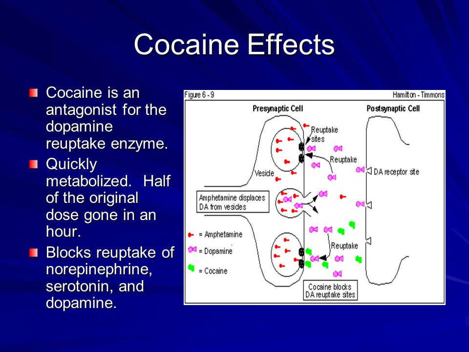 Dopamine - Rewards Since dopamine deals with rewards, excess levels leads to stimulus addiction.
