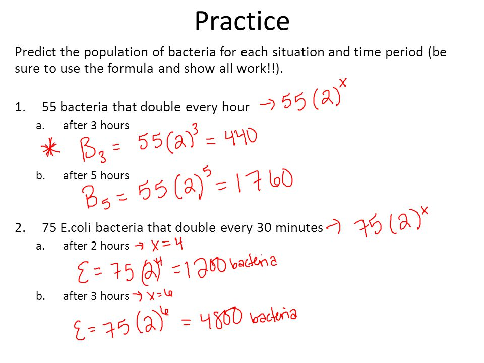 Practice Predict the population of bacteria for each situation and time period (be sure to use the formula and show all work!!).