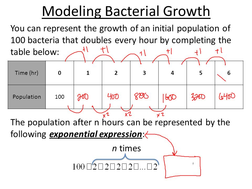 Modeling Bacterial Growth You can represent the growth of an initial population of 100 bacteria that doubles every hour by completing the table below: The population after n hours can be represented by the following exponential expression: n times Time (hr)0123456 Population100