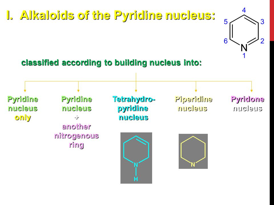 I.Alkaloids of the Pyridine nucleus: classified according to building nucleus into: Pyridine nucleus only Pyridine nucleus + another nitrogenous ring