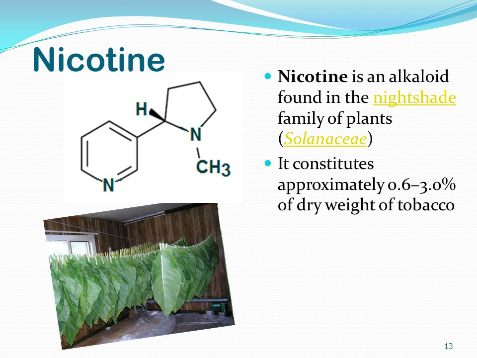 Nicotine Nicotine is an alkaloid found in the nightshade family of plants (Solanaceae)nightshadeSolanaceae It constitutes approximately 0.6–3.0% of dry weight of tobacco 13