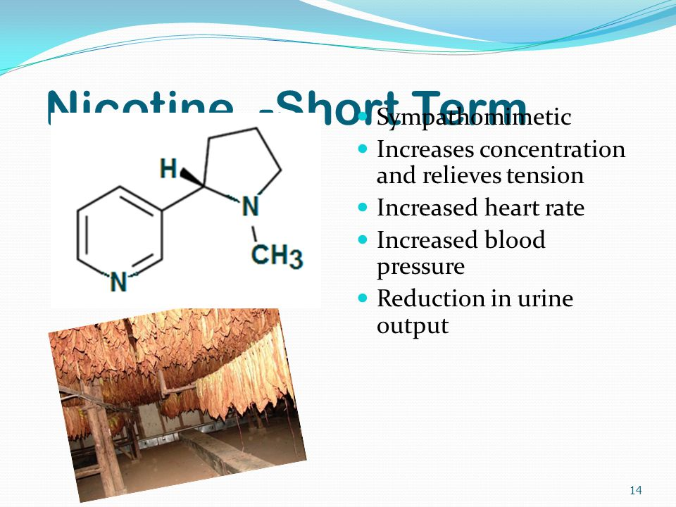 Nicotine -Short Term Sympathomimetic Increases concentration and relieves tension Increased heart rate Increased blood pressure Reduction in urine output 14