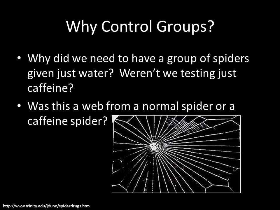 Why Control Groups? Why did we need to have a group of spiders given just water? Weren't we testing just caffeine? Was this a web from a normal spider