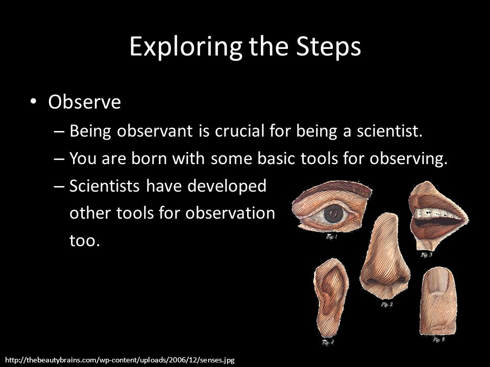 Exploring the Steps Observe – Being observant is crucial for being a scientist. – You are born with some basic tools for observing. – Scientists have