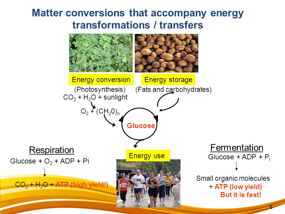 6 Energy use Energy conversionEnergy storage CO 2 + H 2 O + sunlight (Fats and carbohydrates)(Photosynthesis) Glucose O 2 + (CH 2 0) n Respiration Glucose + O 2 + ADP + Pi CO 2 + H 2 O + ATP (high yield!) Fermentation Glucose + ADP + P i Small organic molecules + ATP (low yield) But it is fast.
