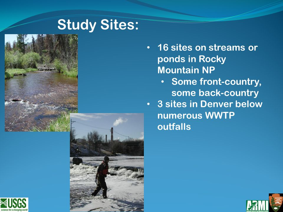 16 sites on streams or ponds in Rocky Mountain NP Some front-country, some back-country 3 sites in Denver below numerous WWTP outfalls Study Sites: