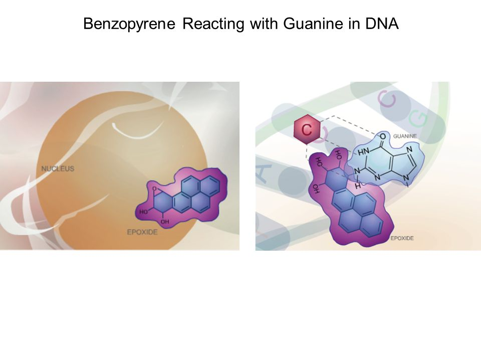 Benzopyrene Reacting with Guanine in DNA