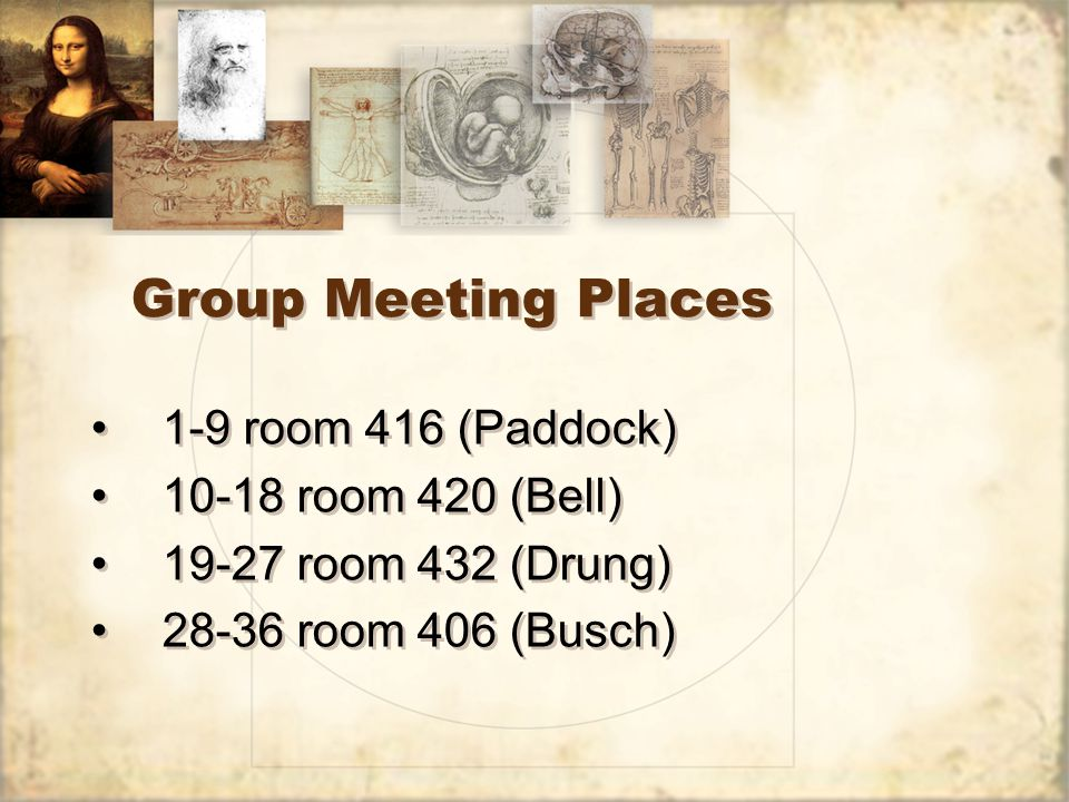Group Meeting Places 1-9 room 416 (Paddock) 10-18 room 420 (Bell) 19-27 room 432 (Drung) 28-36 room 406 (Busch) 1-9 room 416 (Paddock) 10-18 room 420 (Bell) 19-27 room 432 (Drung) 28-36 room 406 (Busch)