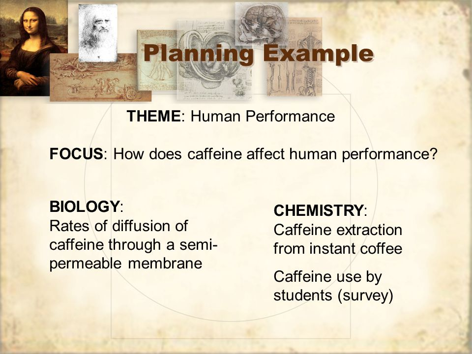 Theme: Dirt (aka soil) Focus: determined by group