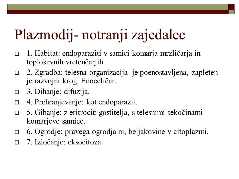 Plazmodij- notranji zajedalec  1. Habitat: endoparaziti v samici komarja mrzličarja in toplokrvnih vretenčarjih.  2. Zgradba: telesna organizacija j