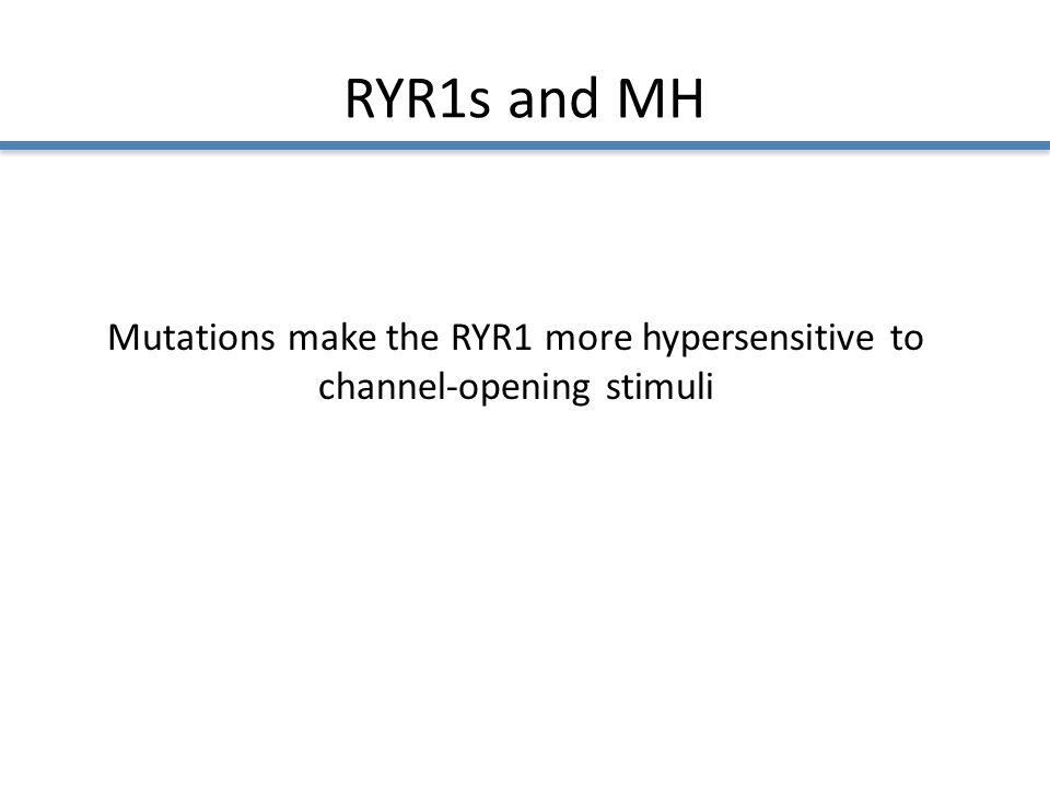 RYR1s and MH Mutations make the RYR1 more hypersensitive to channel-opening stimuli