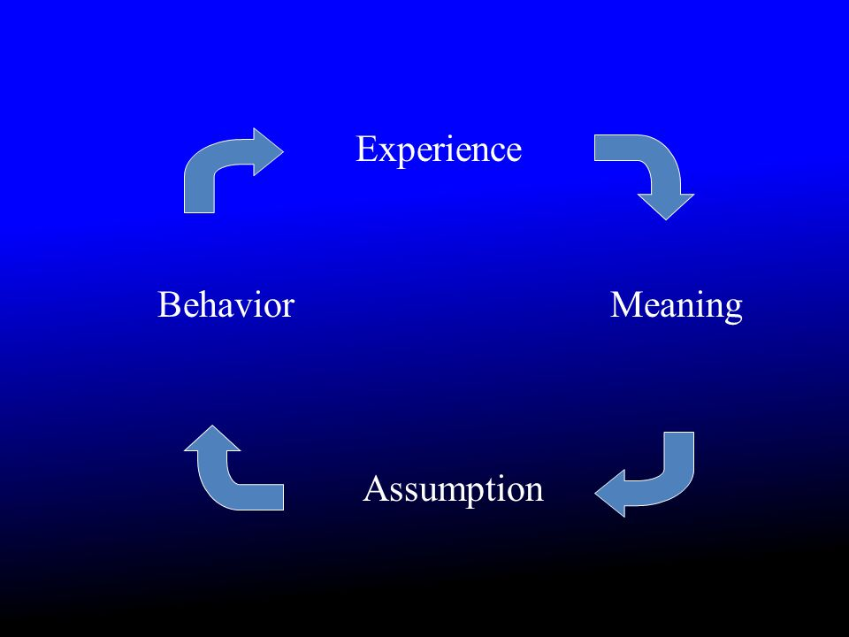 Experience Meaning Assumption Behavior