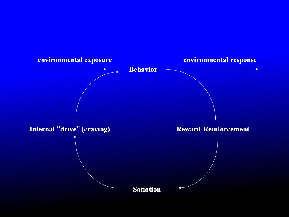 Internal drive (craving) Behavior Reward-Reinforcement Satiation environmental exposureenvironmental response