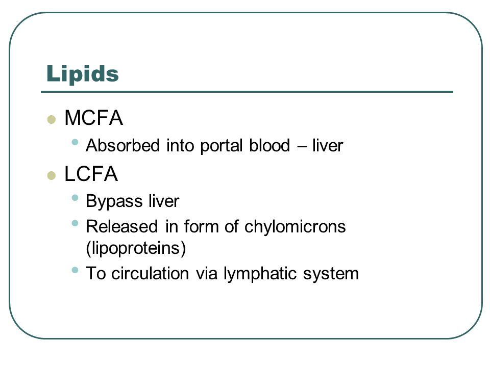 Lipids MCFA Absorbed into portal blood – liver LCFA Bypass liver Released in form of chylomicrons (lipoproteins) To circulation via lymphatic system