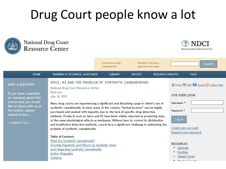 Drug Court people know a lot