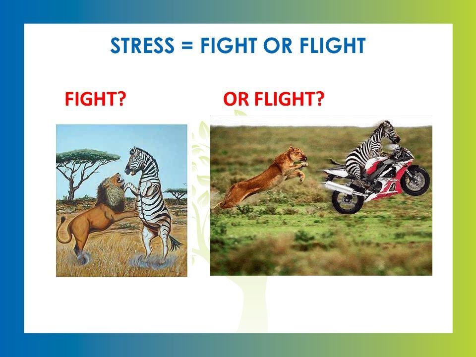 STRESS = FIGHT OR FLIGHT FIGHT?OR FLIGHT?