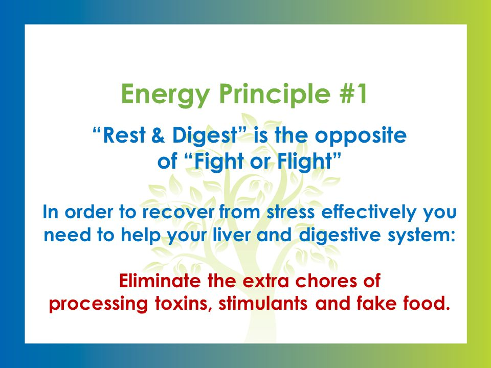 Rest & Digest is the opposite of Fight or Flight In order to recover from stress effectively you need to help your liver and digestive system: Eliminate the extra chores of processing toxins, stimulants and fake food.