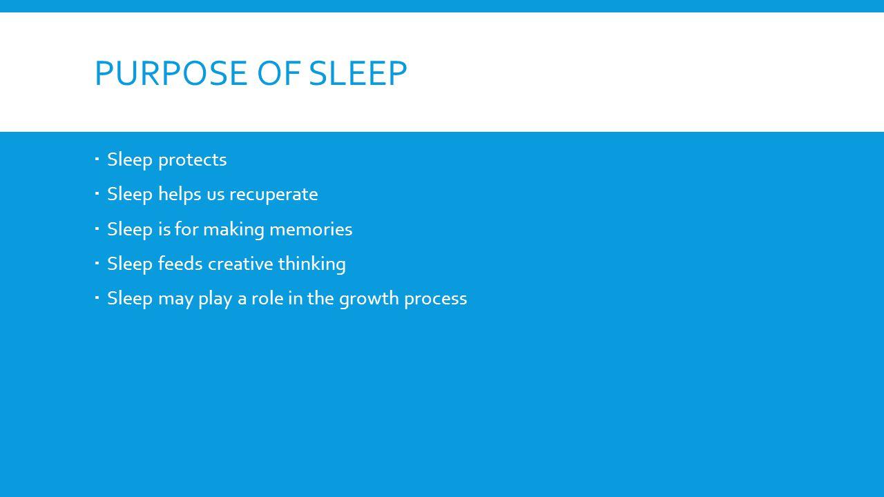 PURPOSE OF SLEEP  Sleep protects  Sleep helps us recuperate  Sleep is for making memories  Sleep feeds creative thinking  Sleep may play a role in the growth process
