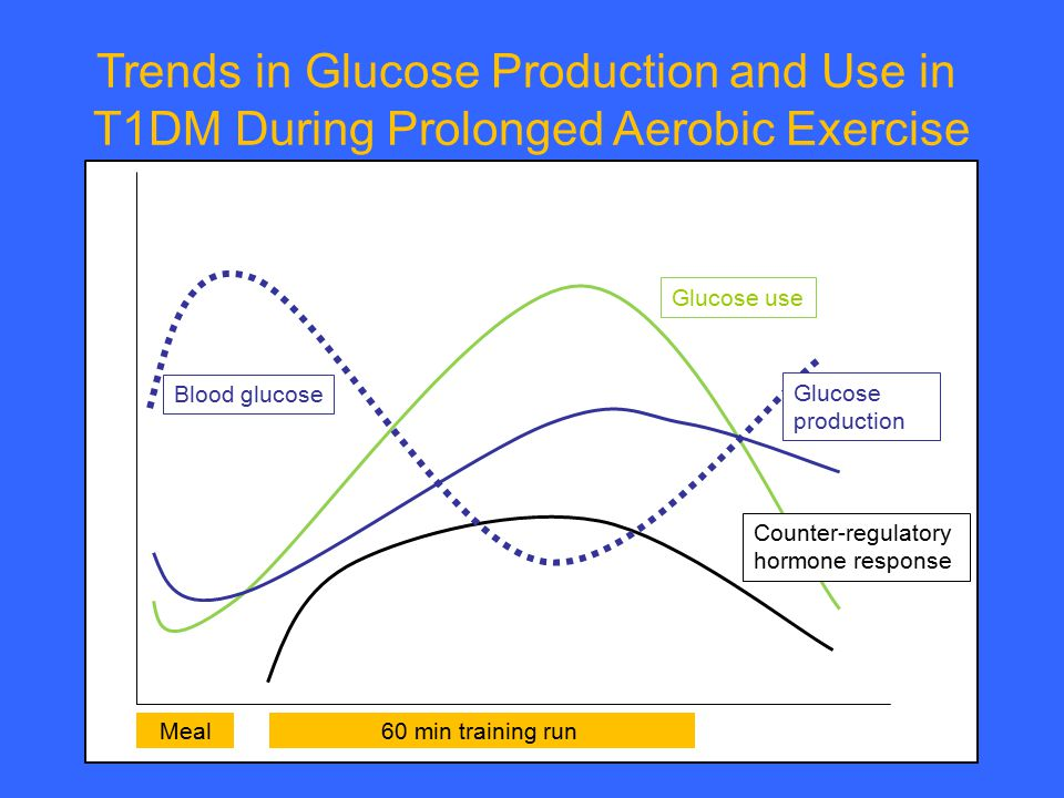 Trends in Glucose Production and Use in T1DM During Prolonged Aerobic Exercise Glucose use Blood glucose 60 min training runMeal Counter-regulatory ho