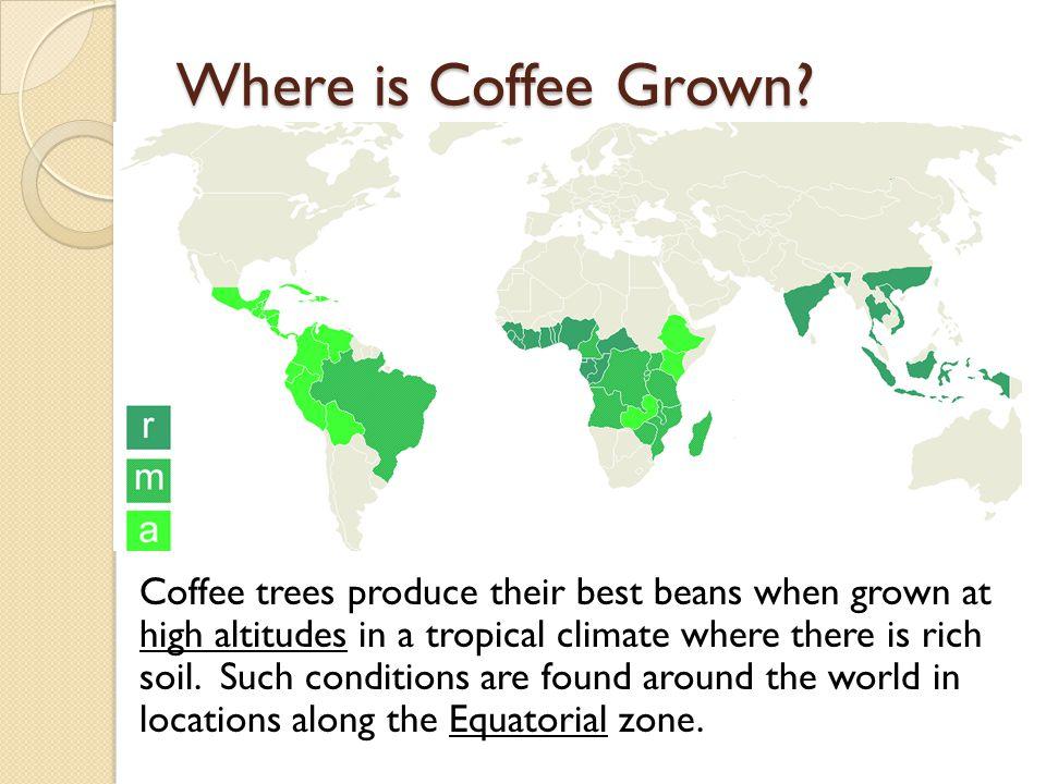 Coffee Exports in Tons Brazil2,249,010 Vietnam961,200 Colombia697,377 Indonesia676,475 Ethiopia325,800 India288,000 Mexico268,565 Guatemala252,000 Peru225,992 Honduras217,951 Côte d Ivoire170,849 Uganda168,000 Costa Rica124,055 Philippines97,877 El Salvador95,456 Nicaragua90,909 Papua New Guinea75,400 Venezuela70,311 Madagascar62,000 Thailand55,660 World7,742,675