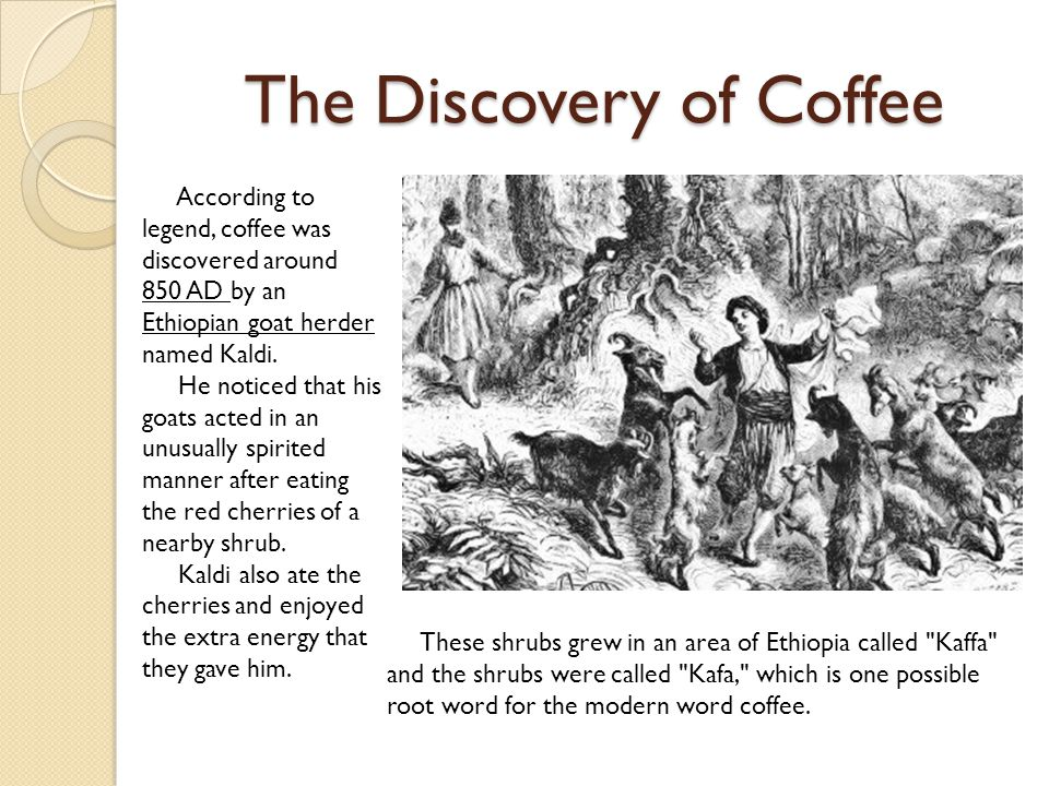 The Discovery of Coffee According to legend, coffee was discovered around 850 AD by an Ethiopian goat herder named Kaldi.