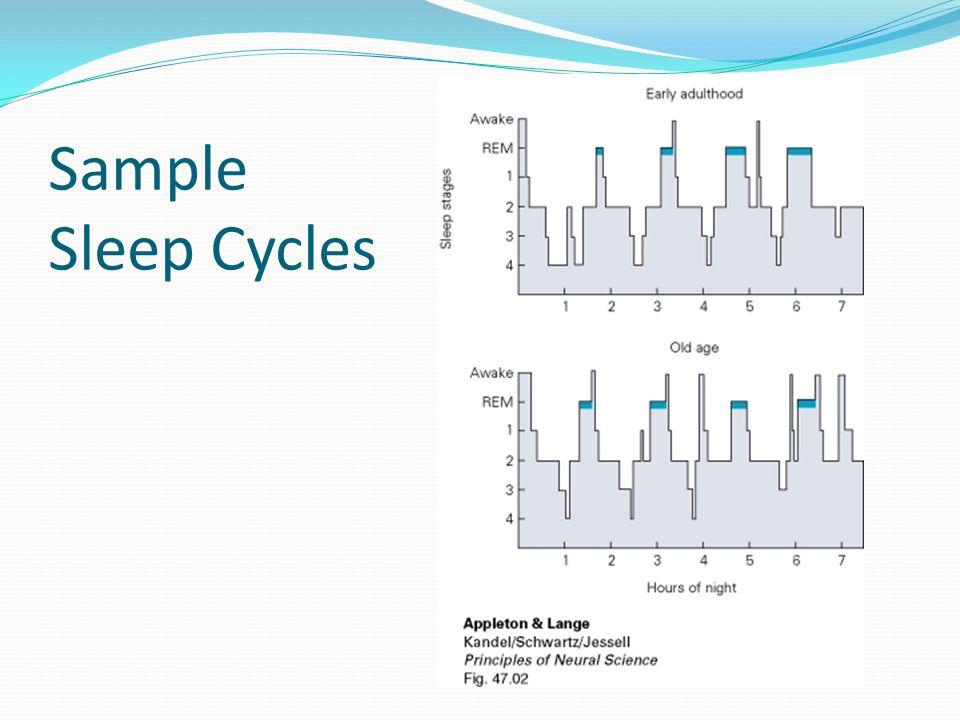 Sample Sleep Cycles
