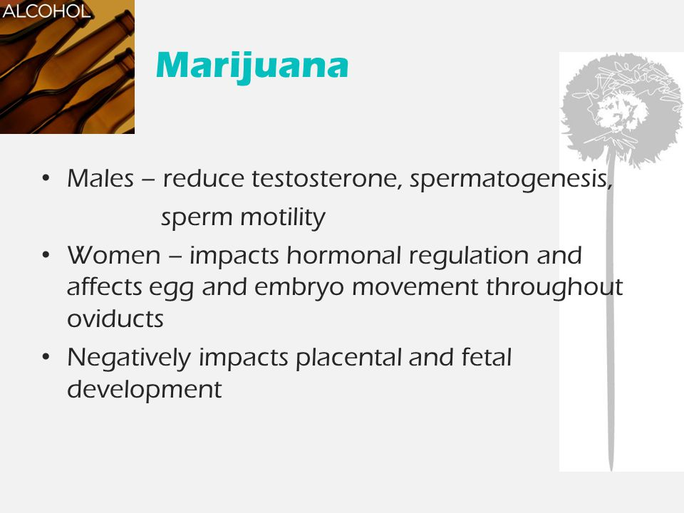 Marijuana Males – reduce testosterone, spermatogenesis, sperm motility Women – impacts hormonal regulation and affects egg and embryo movement through