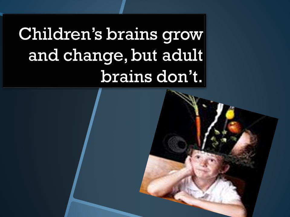 Children's brains grow and change, but adult brains don't.