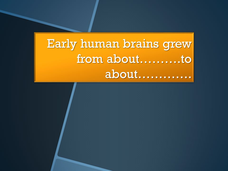 Early human brains grew from about……….to about………….