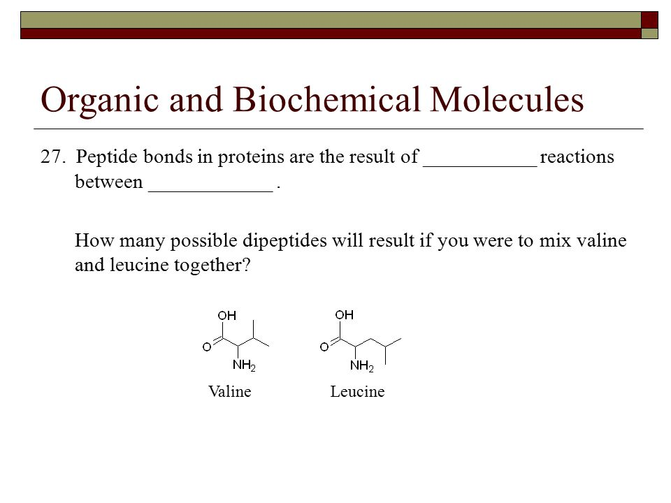 Organic and Biochemical Molecules 27. Peptide bonds in proteins are the result of ___________ reactions between ____________. How many possible dipept