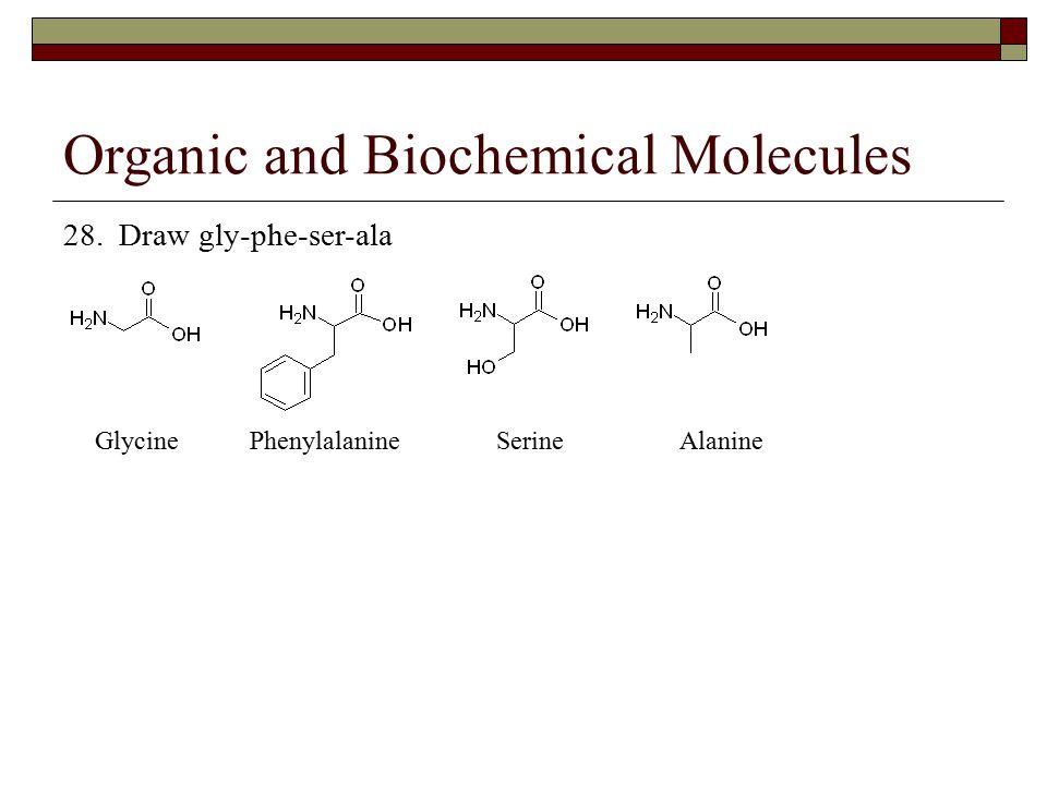 Organic and Biochemical Molecules 28. Draw gly-phe-ser-ala Glycine Phenylalanine Serine Alanine