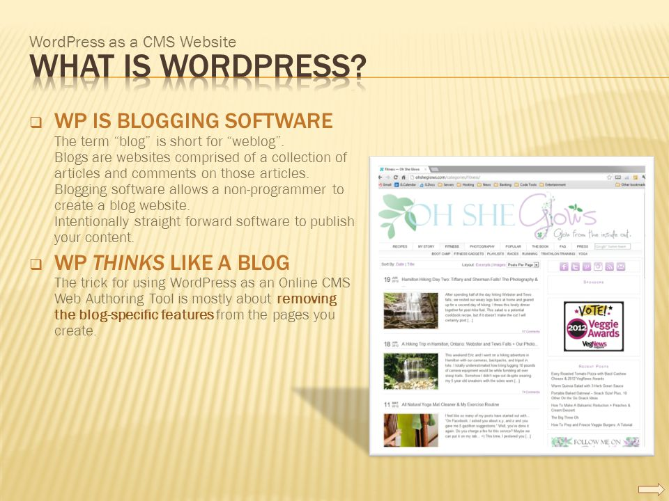 WordPress as a CMS Website  WP IS BLOGGING SOFTWARE The term blog is short for weblog .