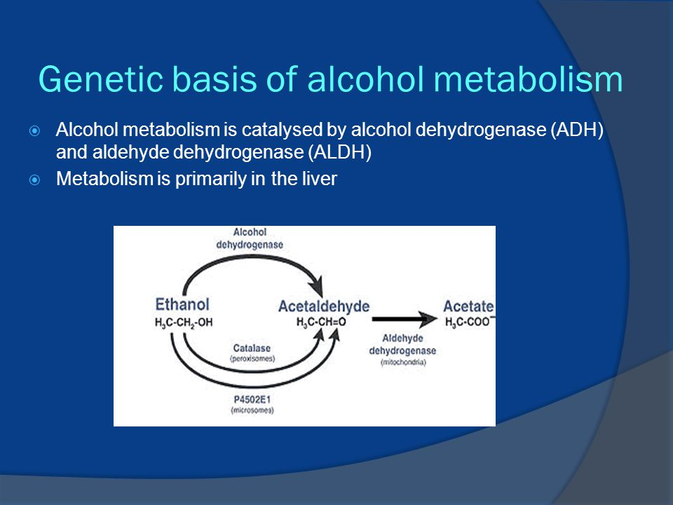 Genetic basis of alcohol metabolism  Alcohol metabolism is catalysed by alcohol dehydrogenase (ADH) and aldehyde dehydrogenase (ALDH)  Metabolism is primarily in the liver