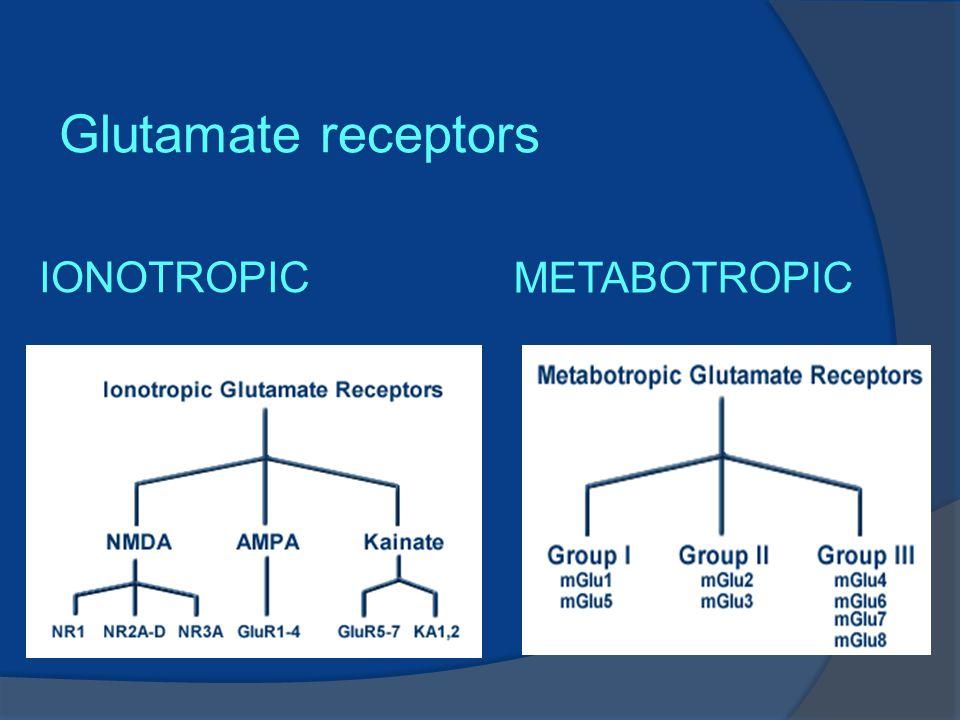 IONOTROPIC METABOTROPIC Glutamate receptors