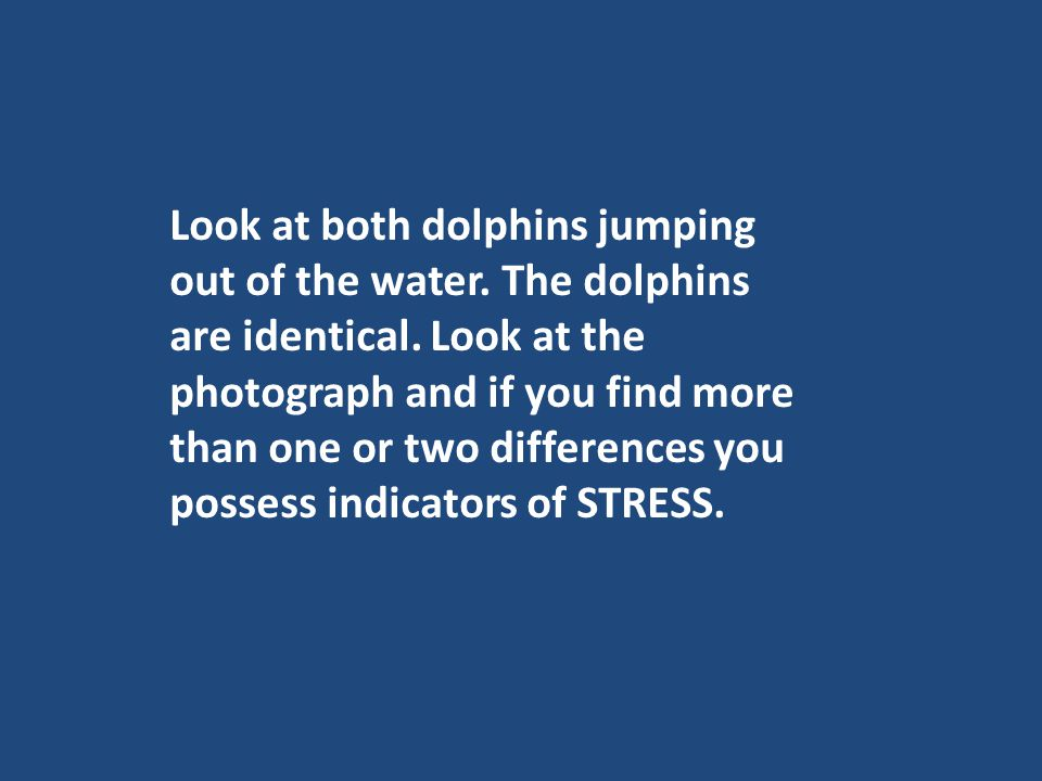 Look at both dolphins jumping out of the water. The dolphins are identical. Look at the photograph and if you find more than one or two differences yo