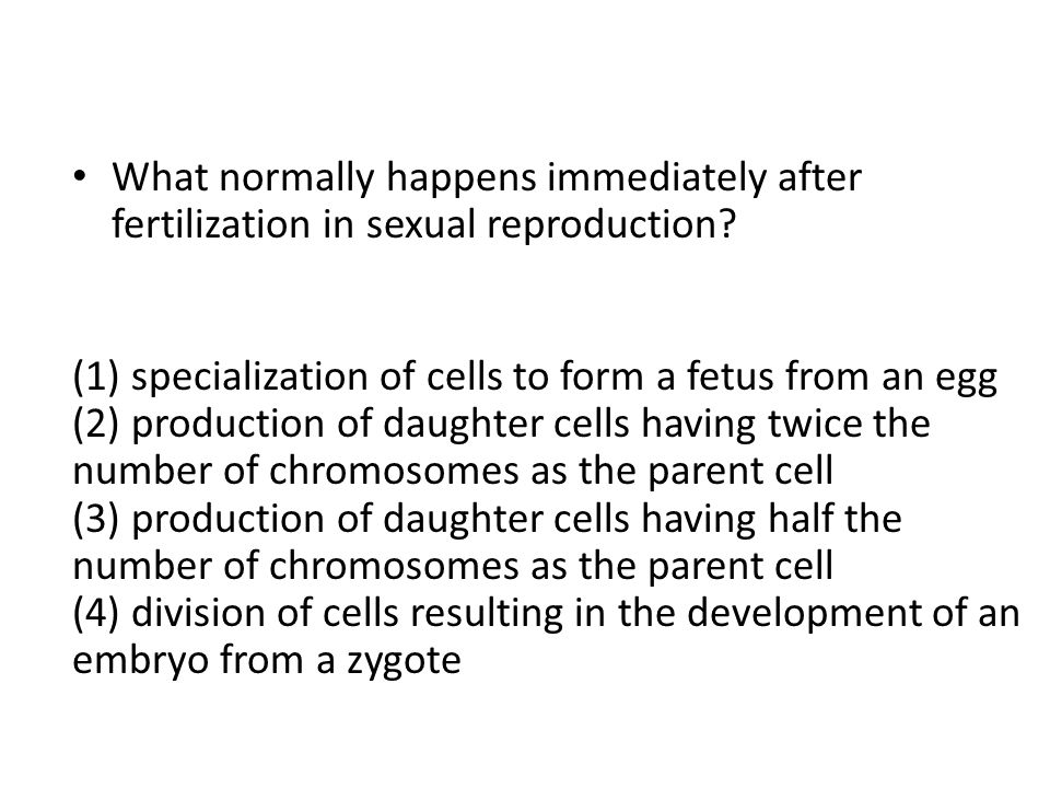 What normally happens immediately after fertilization in sexual reproduction? (1) specialization of cells to form a fetus from an egg (2) production o