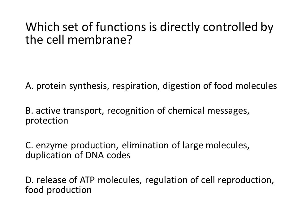 Which set of functions is directly controlled by the cell membrane? A. protein synthesis, respiration, digestion of food molecules B. active transport