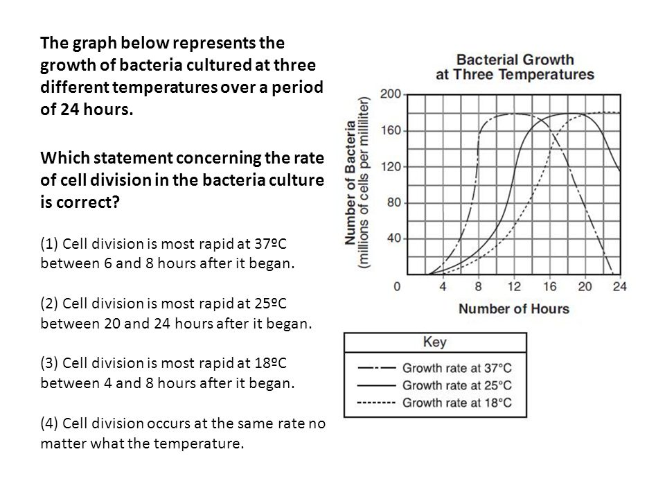 The graph below represents the growth of bacteria cultured at three different temperatures over a period of 24 hours. Which statement concerning the r