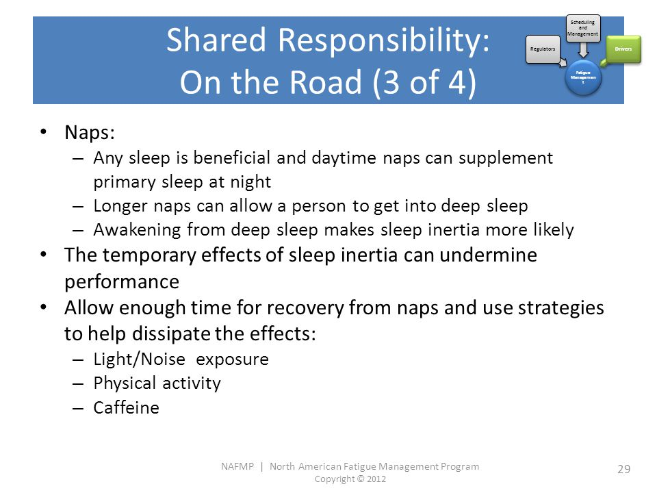 NAFMP | North American Fatigue Management Program Copyright © 2012 29 Naps: – Any sleep is beneficial and daytime naps can supplement primary sleep at night – Longer naps can allow a person to get into deep sleep – Awakening from deep sleep makes sleep inertia more likely The temporary effects of sleep inertia can undermine performance Allow enough time for recovery from naps and use strategies to help dissipate the effects: – Light/Noise exposure – Physical activity – Caffeine Fatigue Managemen t Regulators Scheduling and Management Drivers Shared Responsibility: On the Road (3 of 4)