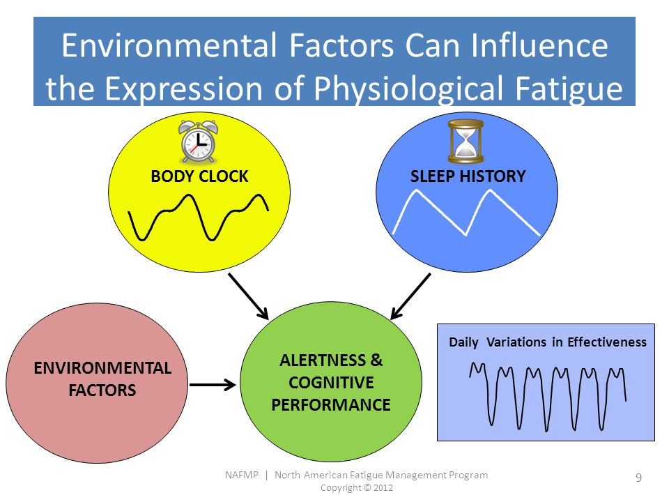 NAFMP | North American Fatigue Management Program Copyright © 2012 10 Timing and Duration of Sleep Most people need between 7 and 9 hrs of sleep.
