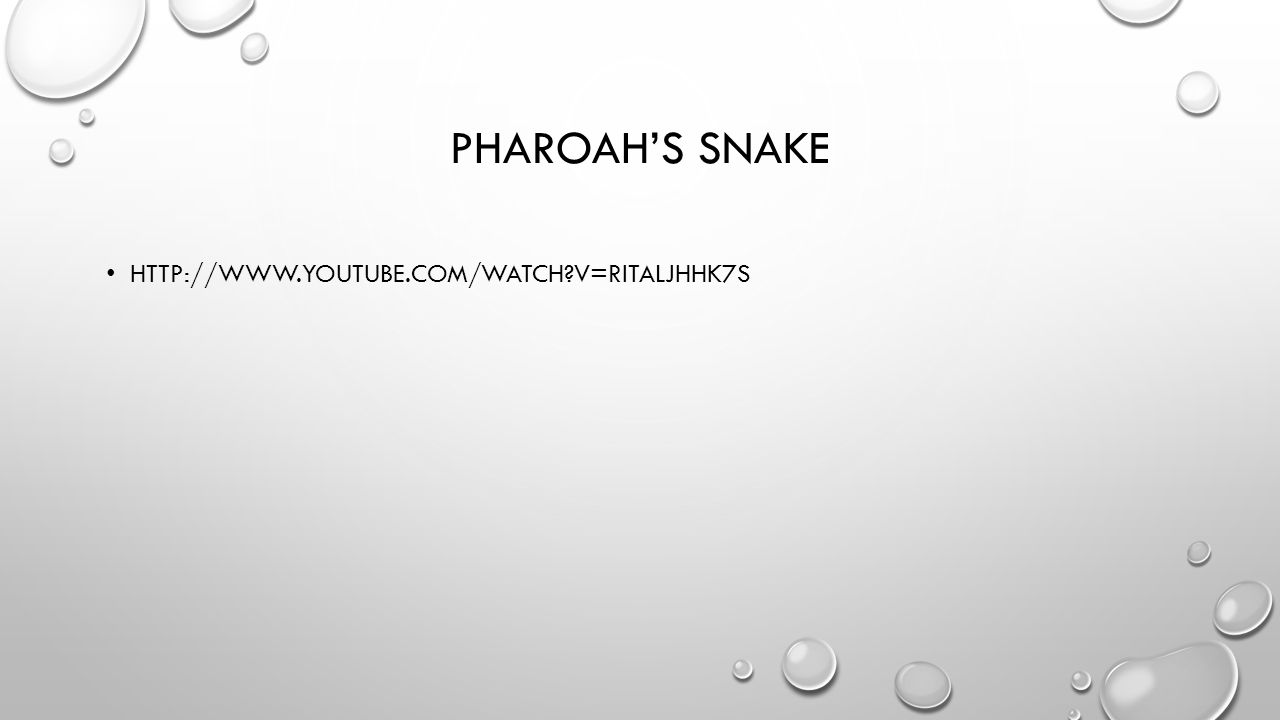 PHAROAH'S SNAKE HTTP://WWW.YOUTUBE.COM/WATCH?V=RITALJHHK7S