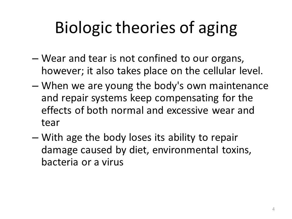 4 Biologic theories of aging – Wear and tear is not confined to our organs, however; it also takes place on the cellular level.