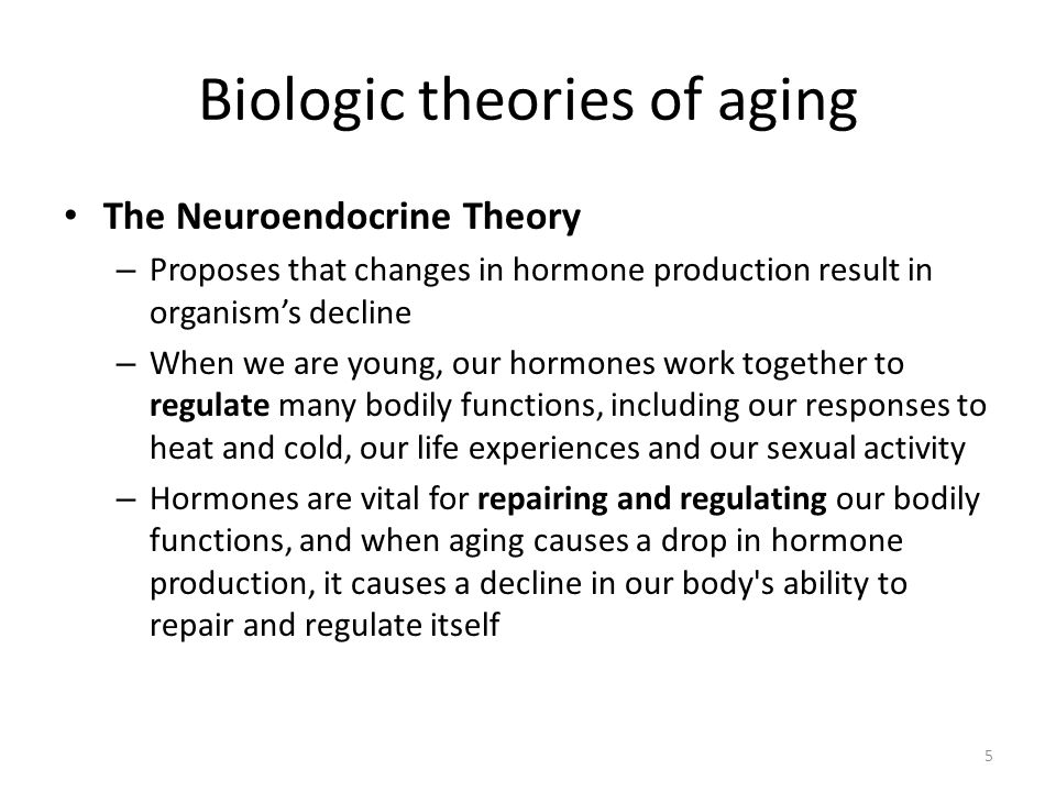 5 Biologic theories of aging The Neuroendocrine Theory – Proposes that changes in hormone production result in organism's decline – When we are young, our hormones work together to regulate many bodily functions, including our responses to heat and cold, our life experiences and our sexual activity – Hormones are vital for repairing and regulating our bodily functions, and when aging causes a drop in hormone production, it causes a decline in our body s ability to repair and regulate itself