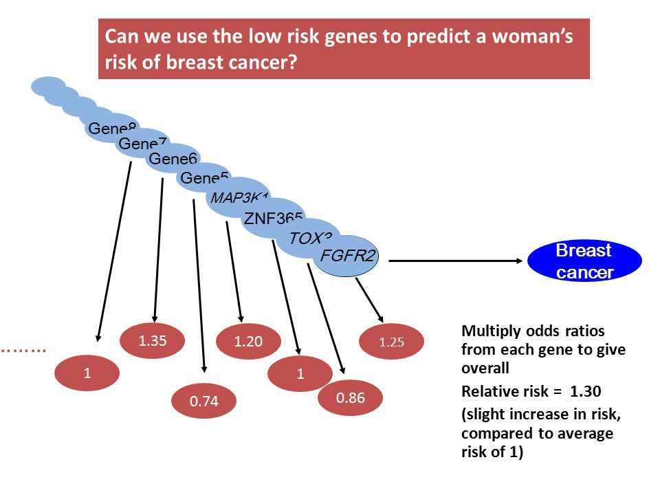 Multiply odds ratios from each gene to give overall Relative risk = 1.30 (slight increase in risk, compared to average risk of 1) Can we use the low risk genes to predict a woman's risk of breast cancer.