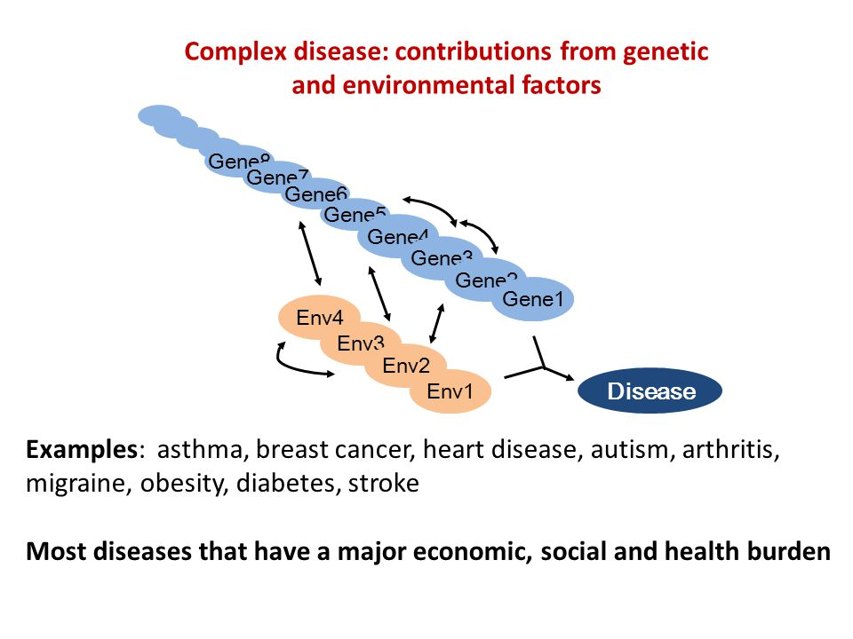 Summary Scientific strides in identifying the inherited genetic variants that affect disease risk Gives biological insights into the disease Very limited disease prediction available from current findings – Incomplete knowledge of polygenic component of disease – Causal genetic variants are unknown Better prediction comes from – Family history – Environmental risk factors (smoking, body mass index) – Pre-clinical factors (blood pressure, cholesterol levels)