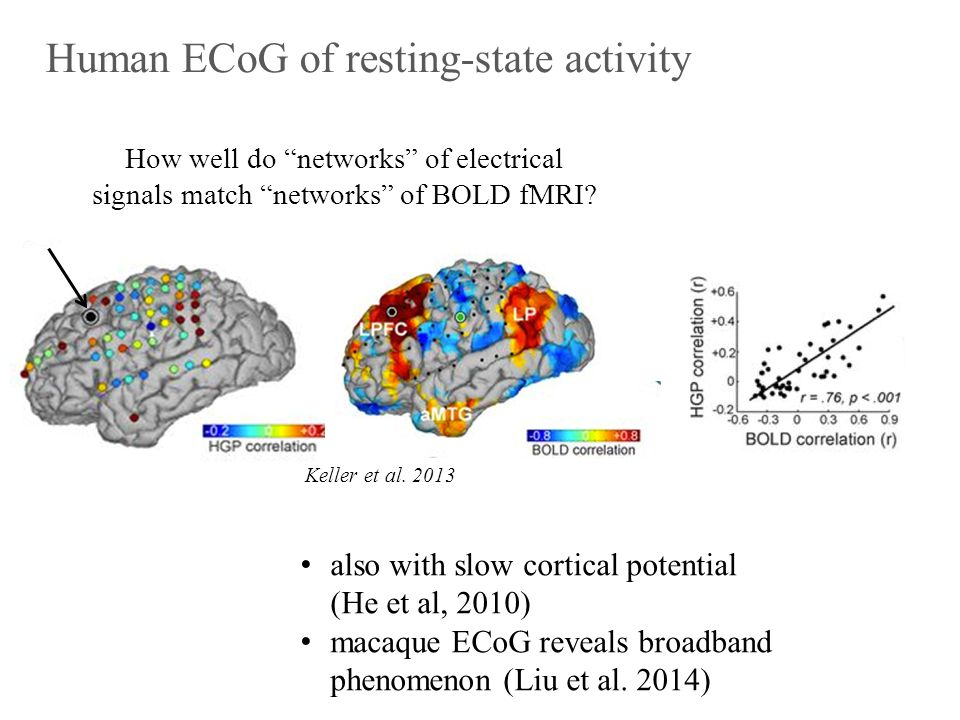 Simultaneous LFP-fMRI of resting-state fluctuations Shmuel & Leopold, 2008 gamma power fluctuations in local field potential (LFP) found to correlate