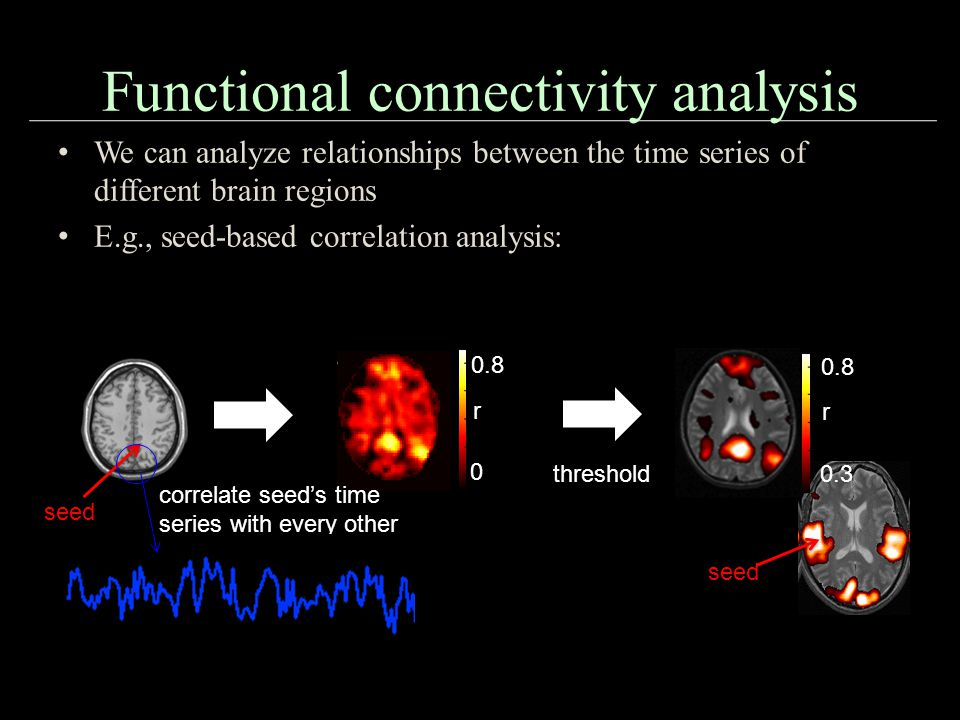 Functional connectivity analysis 0 0.8 r seed correlate seed's time series with every other voxel's time series threshold seed 0.3 0.8 r We can analyze relationships between the time series of different brain regions E.g., seed-based correlation analysis: