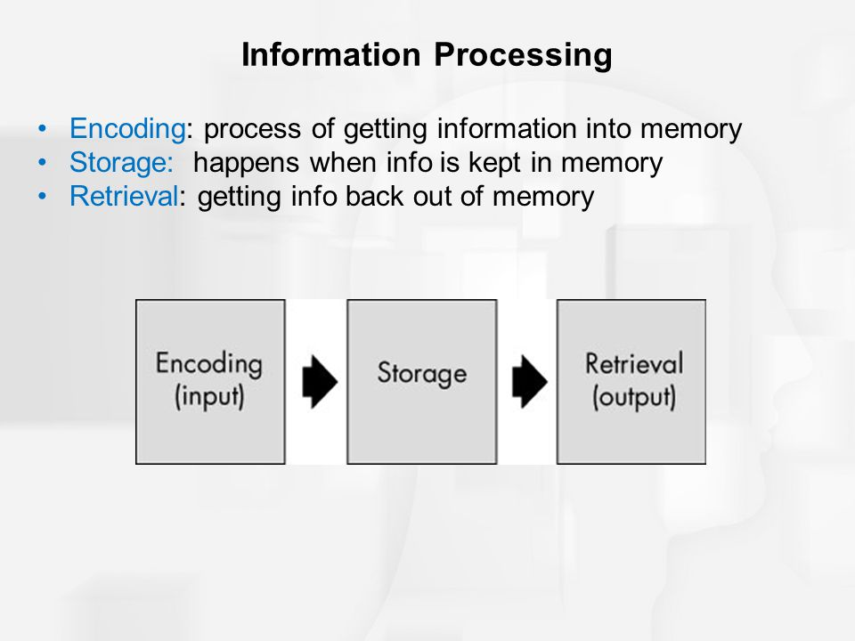 Encoding: process of getting information into memory Storage: happens when info is kept in memory Retrieval: getting info back out of memory Informati
