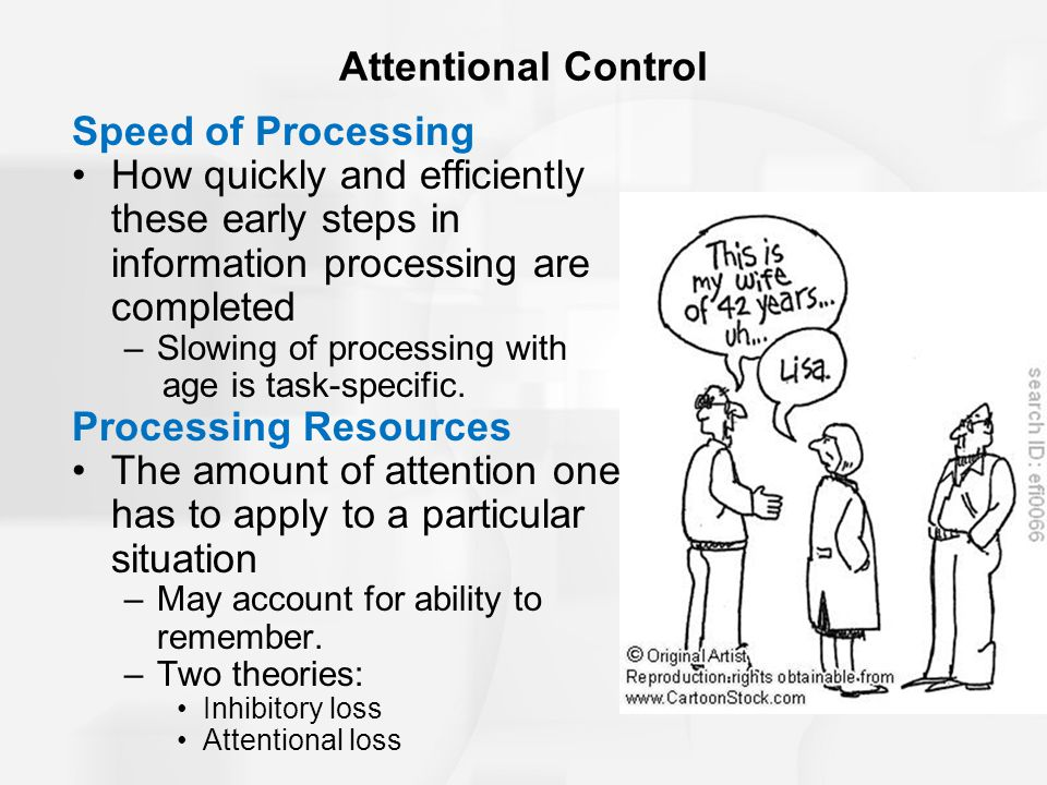 Speed of Processing How quickly and efficiently these early steps in information processing are completed –Slowing of processing with age is task-spec